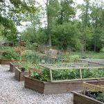 Amazing Best Vegetable Garden Layout