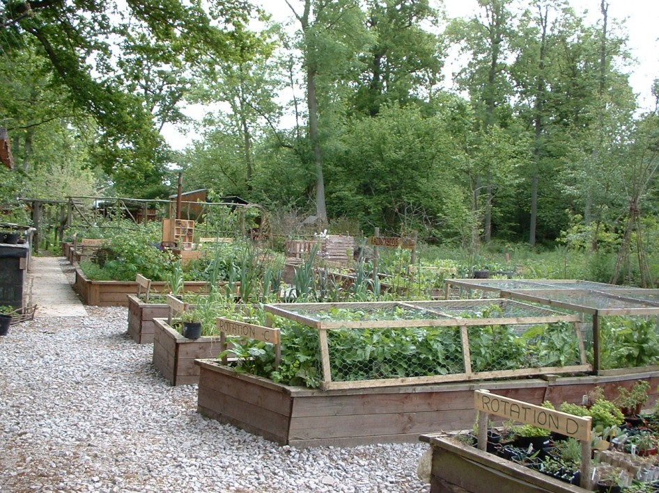 Picture of: Amazing Best Vegetable Garden Layout