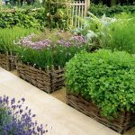 Awesome Best Vegetable Garden Layout