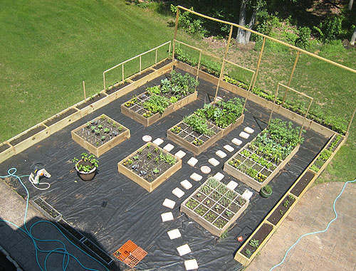 Best Vegetable Garden Layout Plans