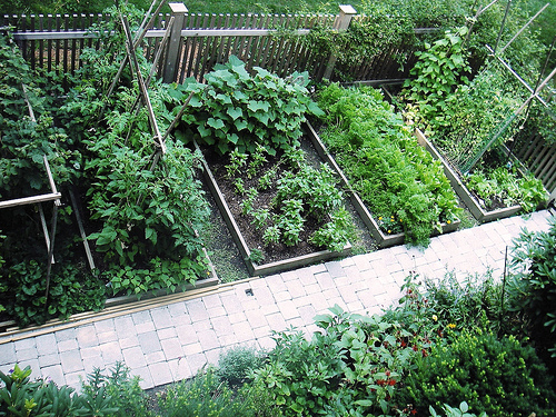 Picture of: Best Vegetable Garden Layout in the Background
