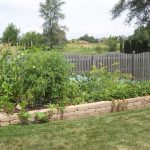 Great Best Vegetable Garden Layout