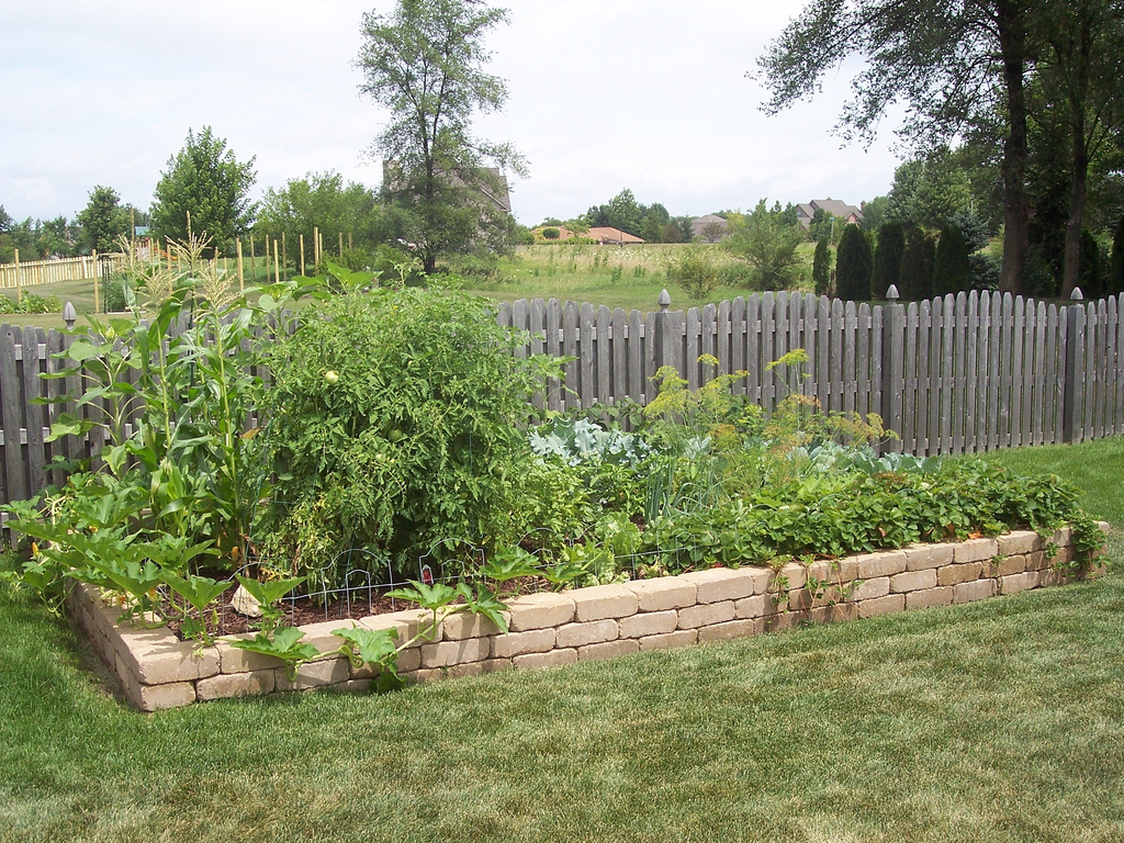 Picture of: Great Best Vegetable Garden Layout