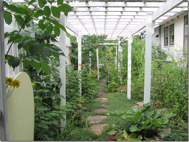 Picture of: Indoor Vegetable Gardening Tips