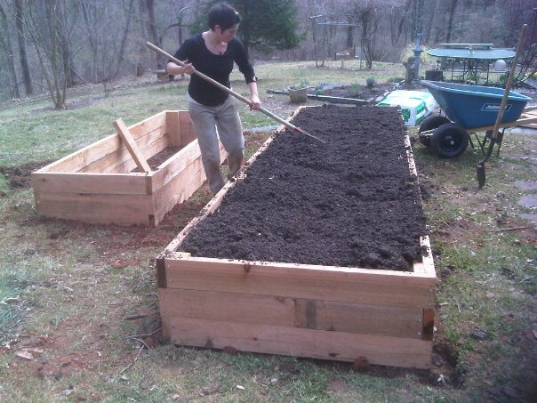 Image of: Raised Vegetable Garden Layout for Beginers