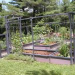 Vegetable Gardening Design Ideas