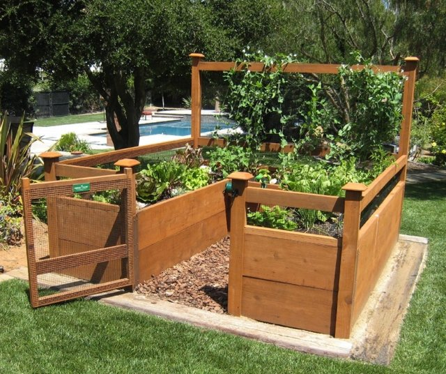 Picture of: how to Raised Vegetable Garden Layout