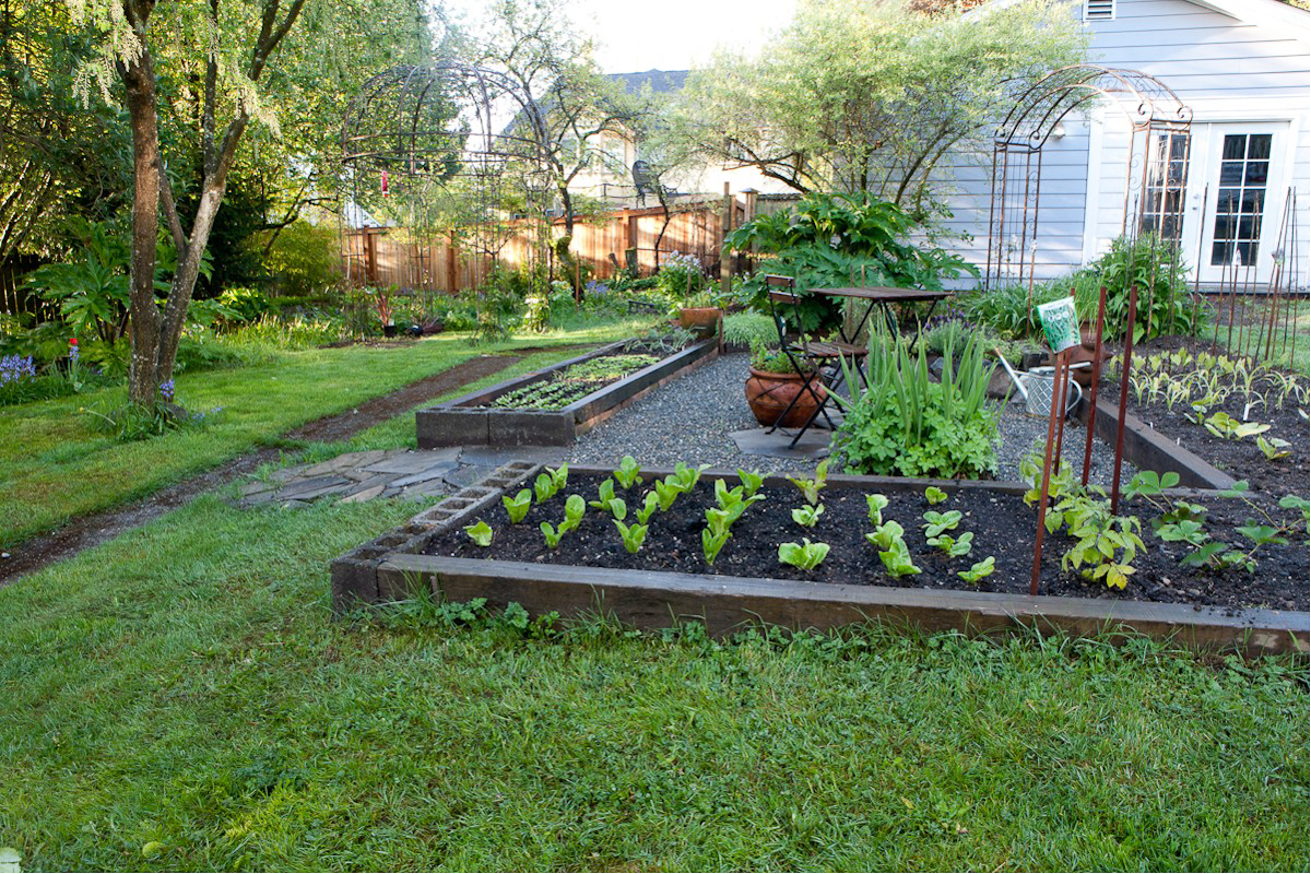Picture of: ideas Urban Vegetable Gardening