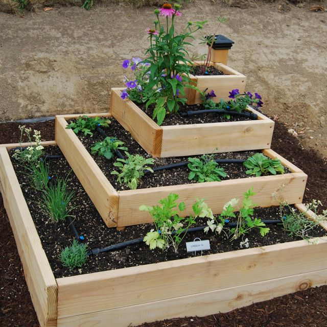 Image of: small Raised Vegetable Garden Layout
