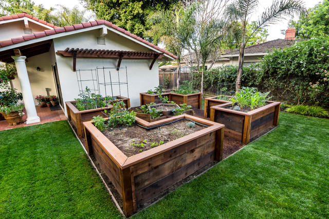 Traditional Raised Vegetable Garden Layout