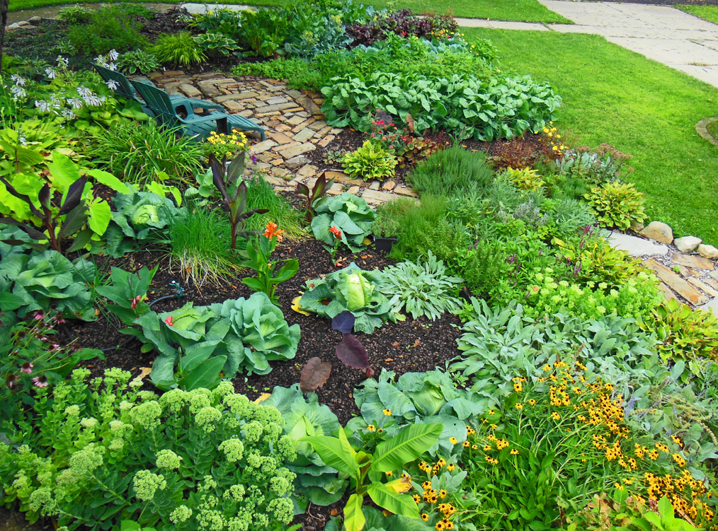 Picture of: Front yard vegetable garden plants