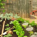 Small Vegetable Garden Layout Photo