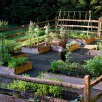 Traditional Small Vegetable Garden Layout