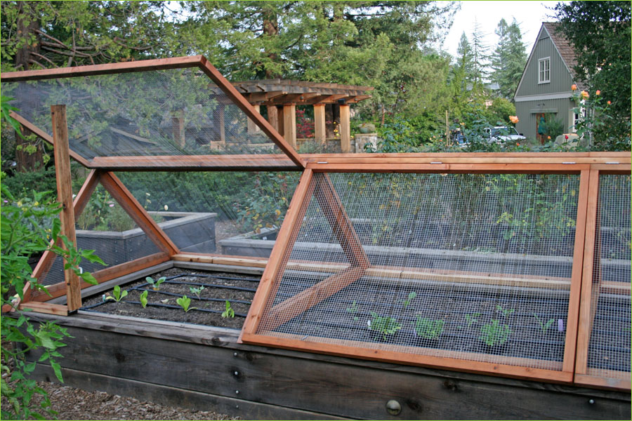 Vegetable Garden Fence Ideas Decoration