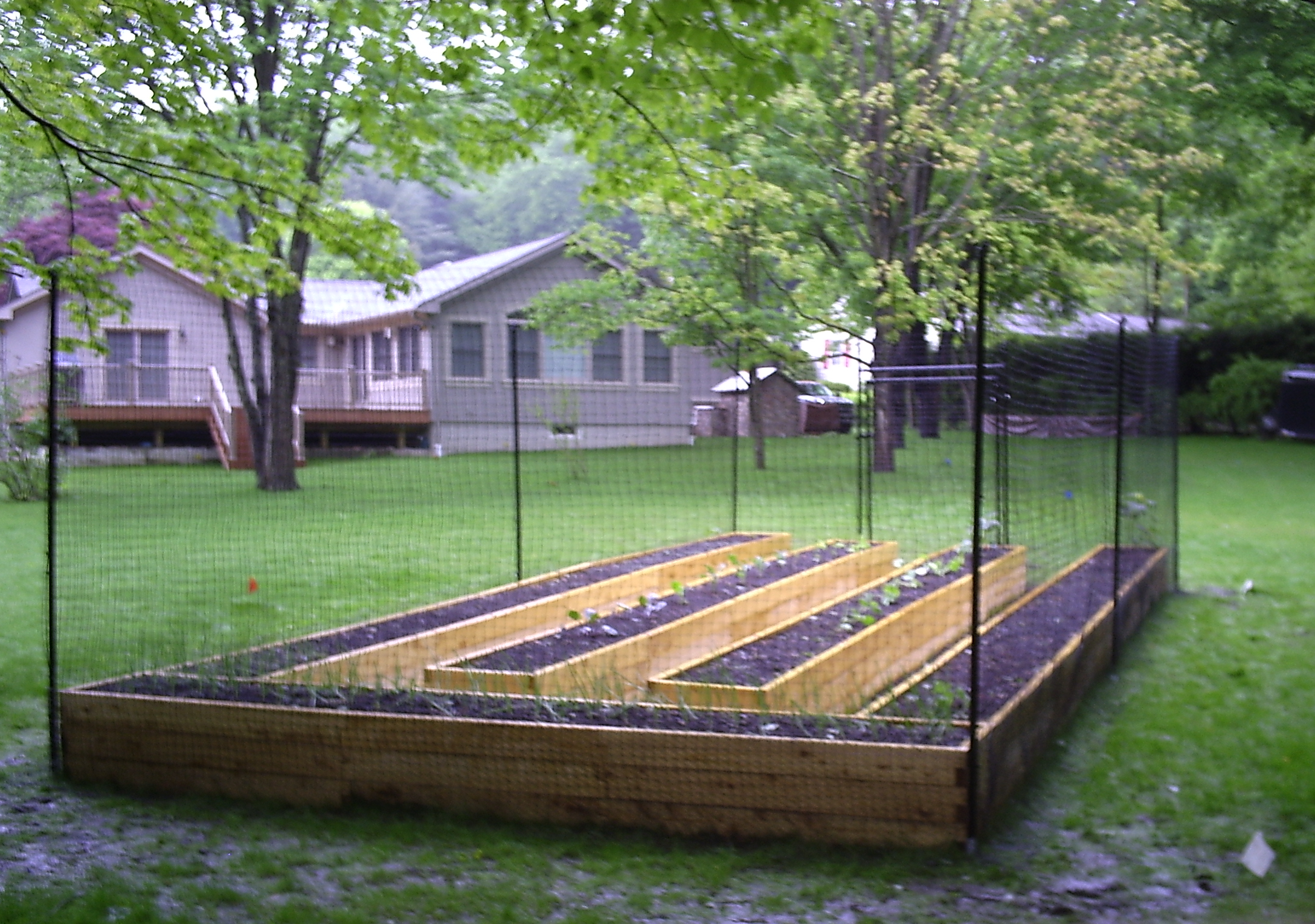 Image of: Vegetable Garden Fence Ideas Design
