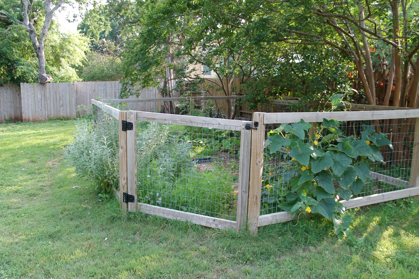 Image of: Vegetable Garden Fence Ideas