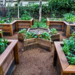 Building Raised Vegetable Garden Ideas