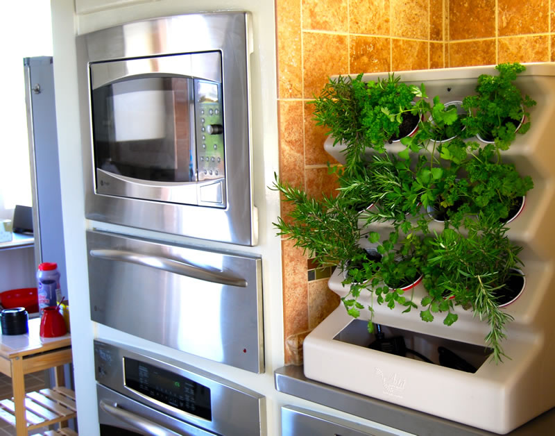 Charming Indoor Vegetable Garden Ideas