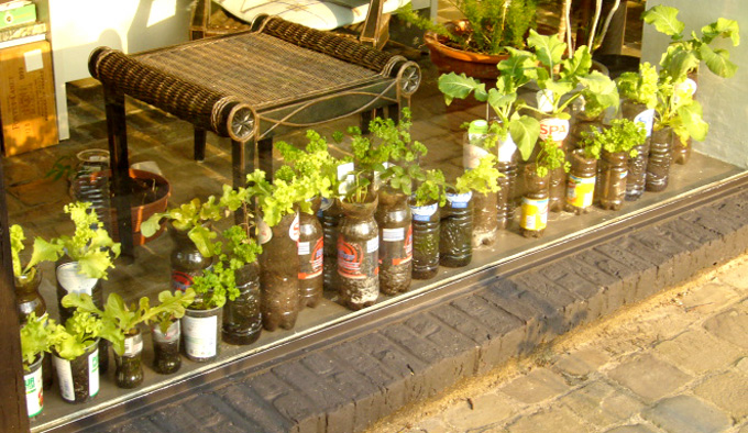 how to potted vegetable garden