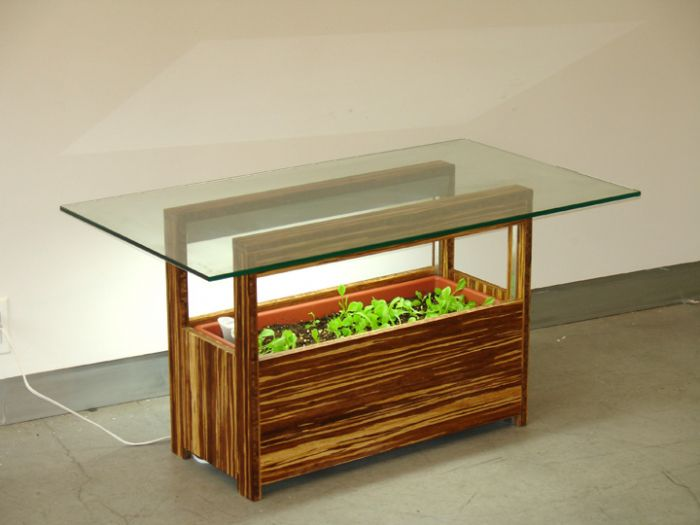 Picture of: ideas indoor vegetable garden ideas