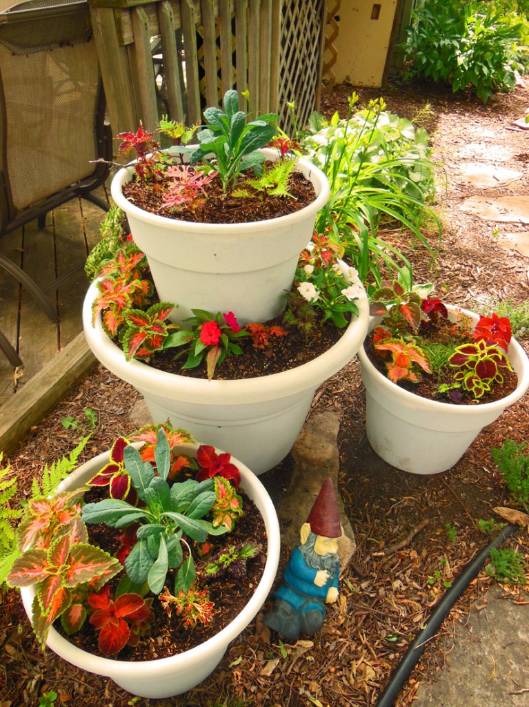 Image of: ideas potted vegetable garden