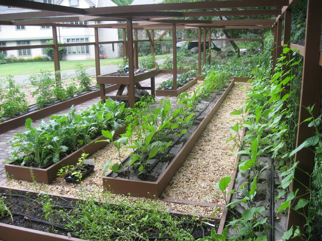Picture of: lighting indoor vegetable garden ideas