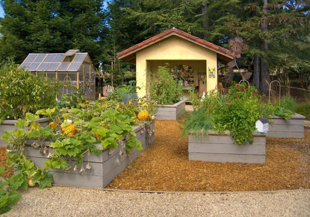 Picture of: raised vegetable garden ideas plan