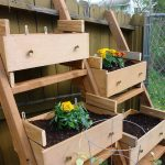Simple Potted Vegetable Garden