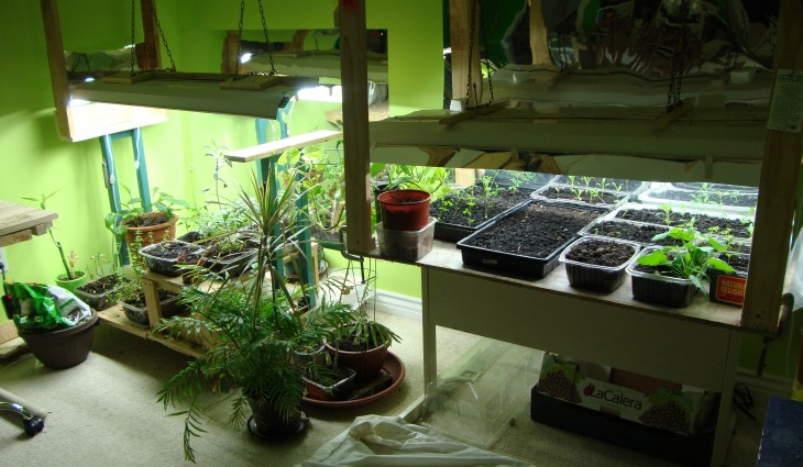 Picture of: small indoor vegetable garden ideas