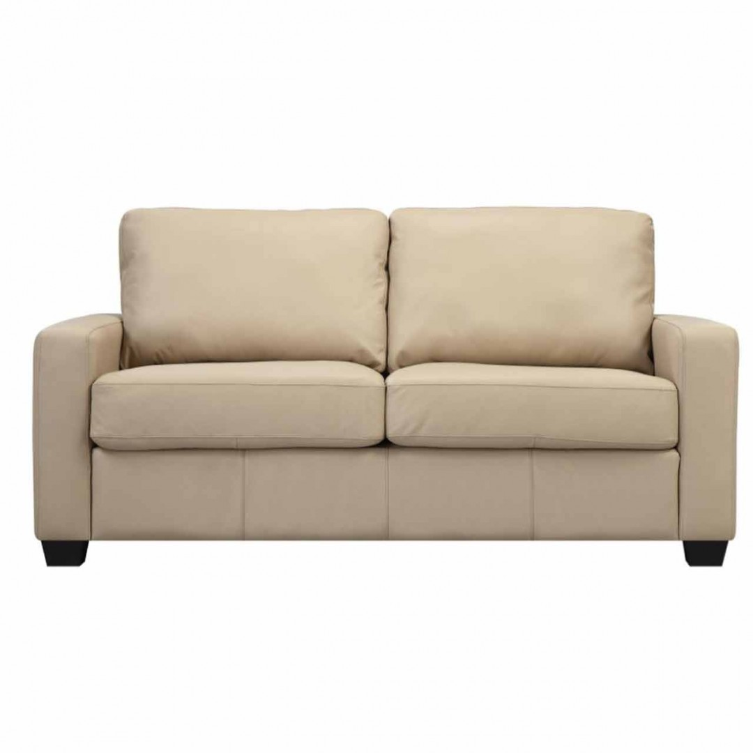 Picture of: Club Twin Sofa Sleeper