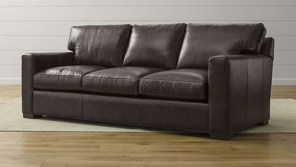 Image of: Leather Sofa Sleeper
