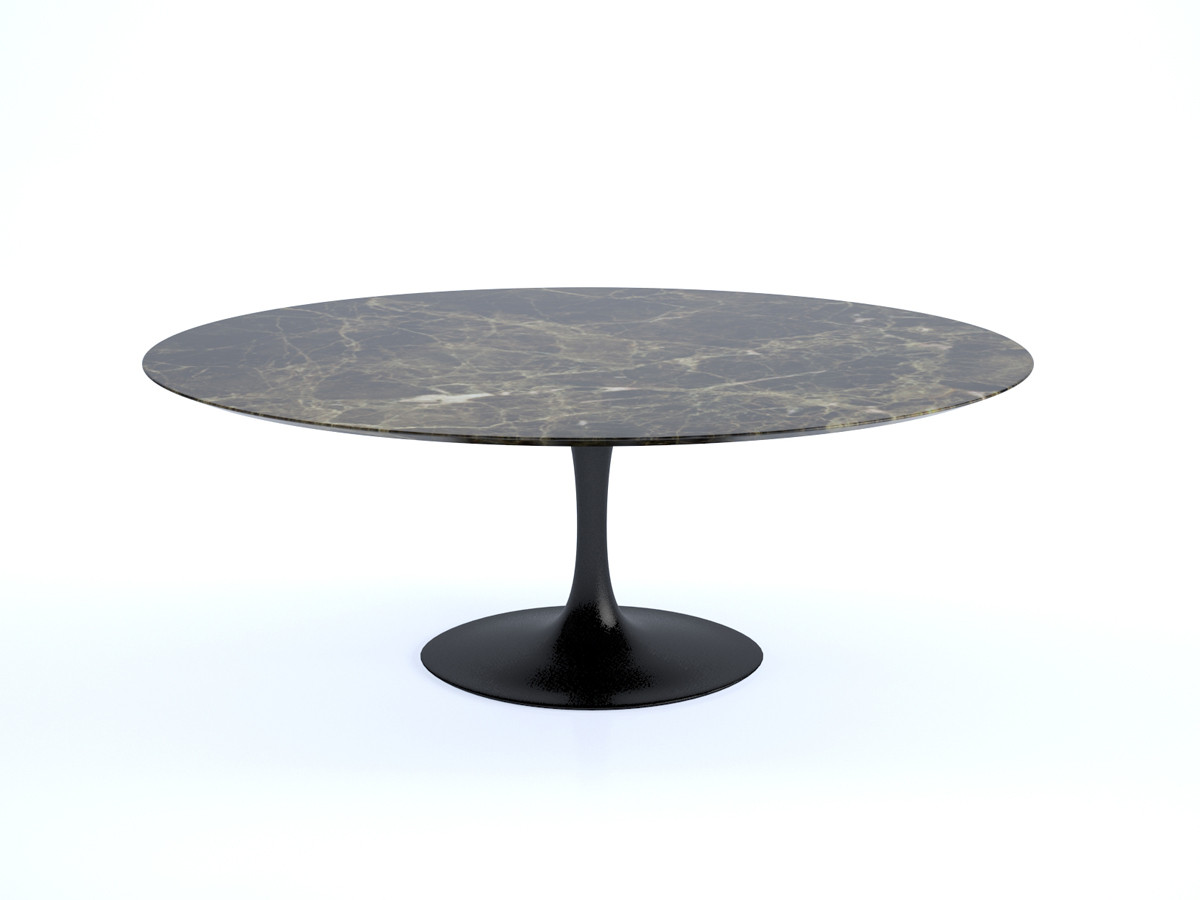 Best Saarinen Oval Dining Table Design