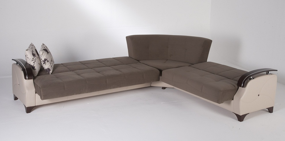 Image of: Sleeper Sofa Sectional Shapes