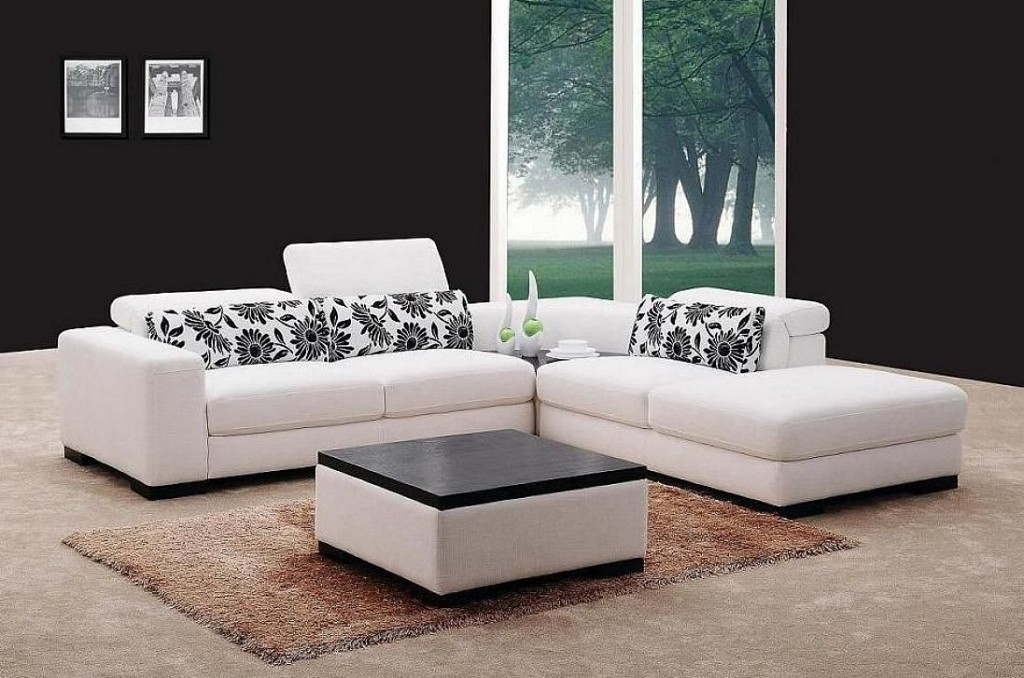 Image of: Sleeper Sofa Sectional White