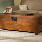 Amazing Coffee Table Trunks