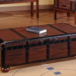 Best Coffee Table Trunks