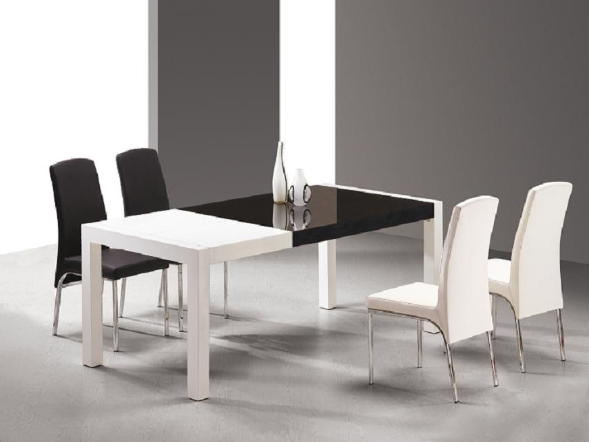Image of: Modern Dining Tables Furniture