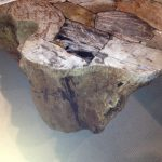 petrified-wood-coffee-table