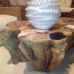 Petrified Wood Coffee Table Decor