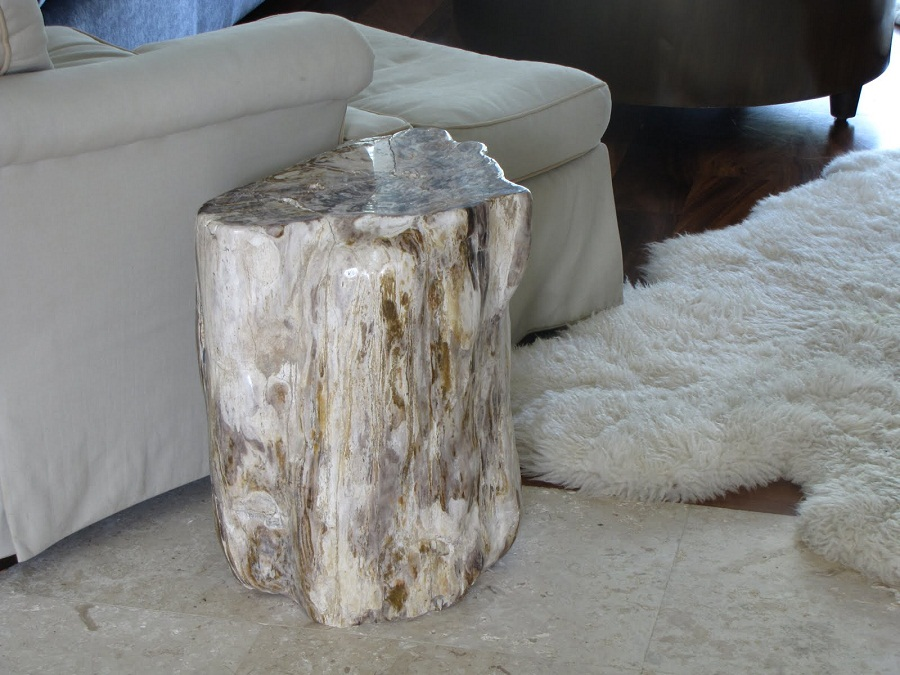Picture of: petrified wood coffee table small