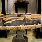 Petrified Wood Coffee Table Style