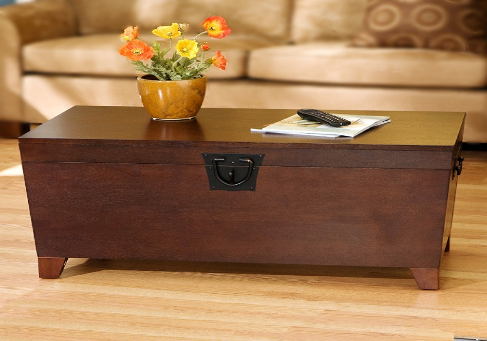 Picture of: Simple Coffee Table Trunks