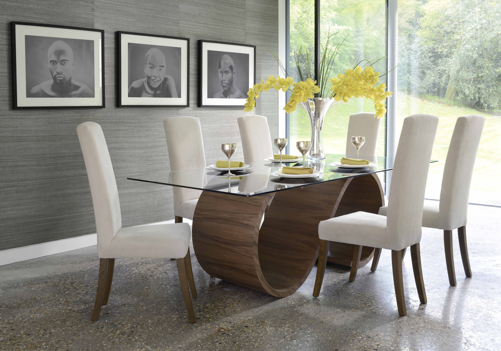 Image of: Stylish Modern Dining Tables