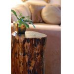 Tree Stump Coffee Table And How To Make It