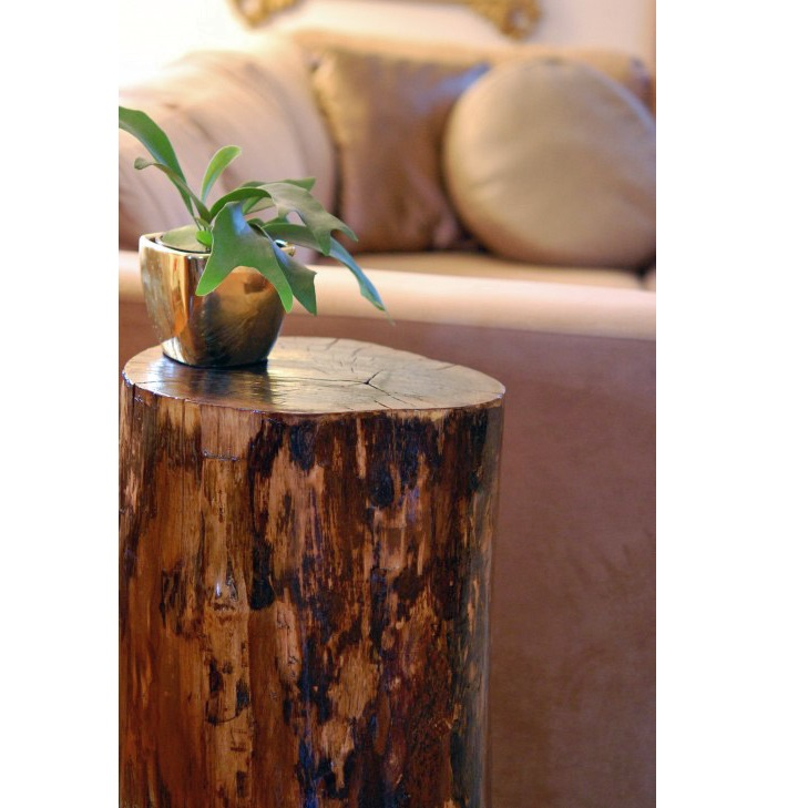 Picture of: Tree Stump Coffee Table and How To Make It
