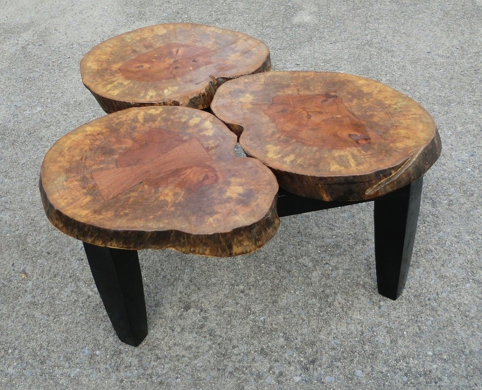Picture of: Wood Stump Coffee Table Ideas