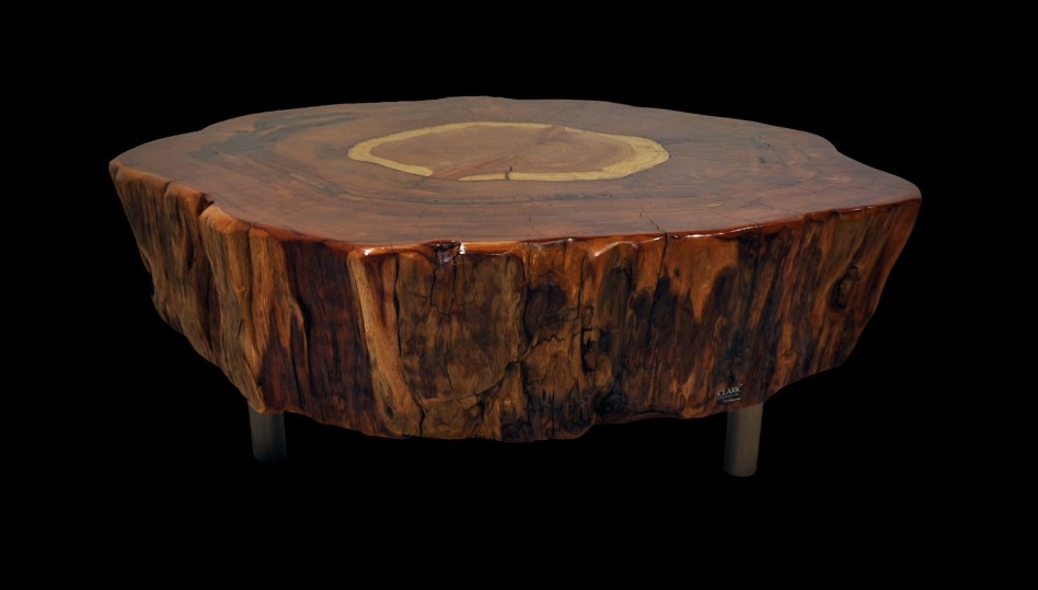 Picture of: Wood Stump Coffee Table Rustic
