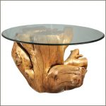 Wood Stump Coffee Table With Glass Top