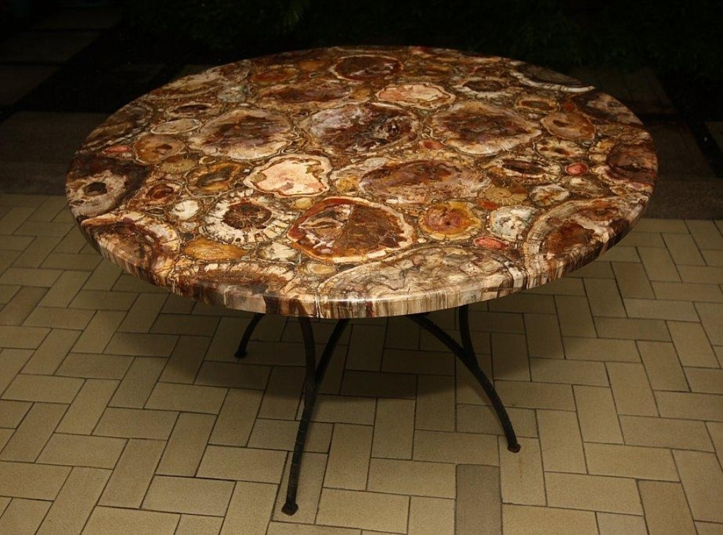 Picture of: petrified wood table the best