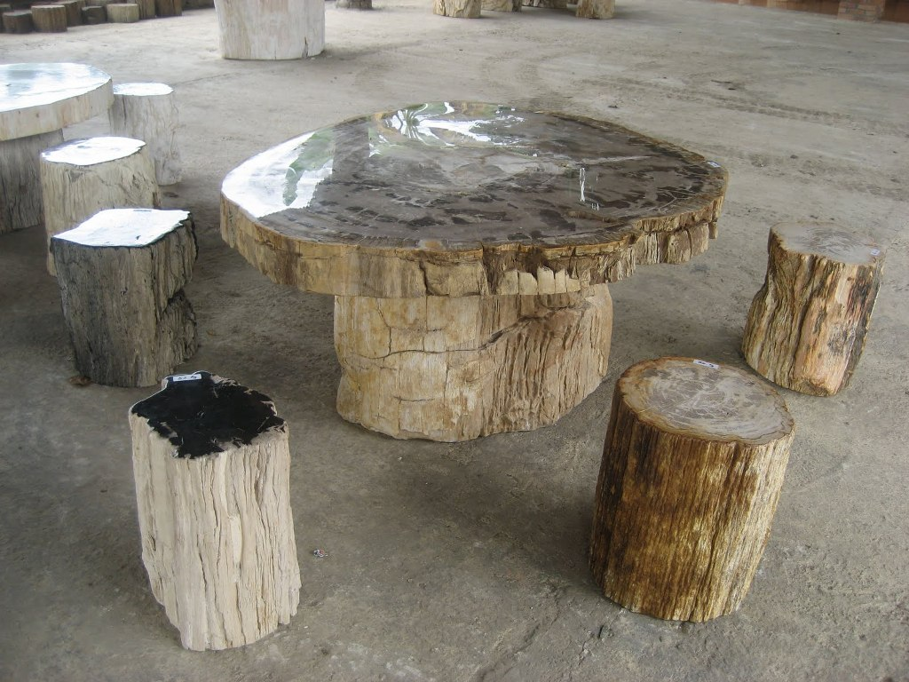 Picture of: petrified wood tables and slabs